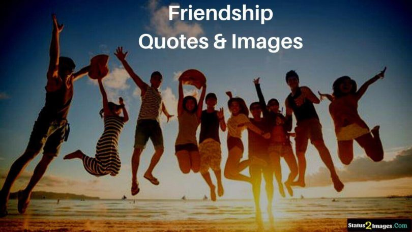 friendship quotes and status image statusimages